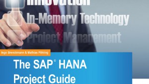 Cover_Implementing_HANA_E-Book2