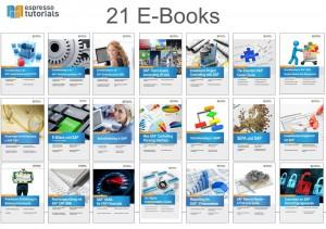 SAP E-Book Flatrate Sonderkonditionen