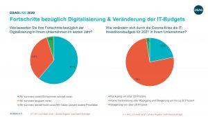 SAP IT Budgets 2021